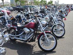たくさんのバイク